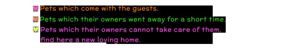 pet-hotel-text[1]